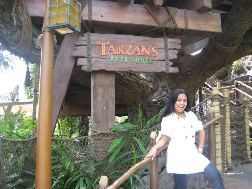 Hong Kong Disneyland Pirateland Tarzan Treehouse