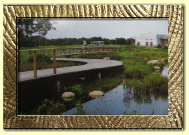 Hong Kong Wetland Park bridge