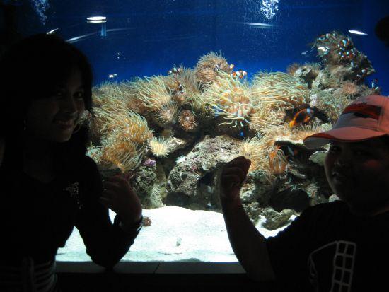 Ocean Park Underwater, HK