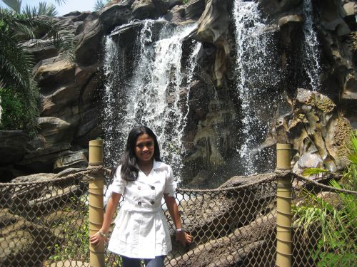 HK Disney Pirateland Tarzan Treehouse