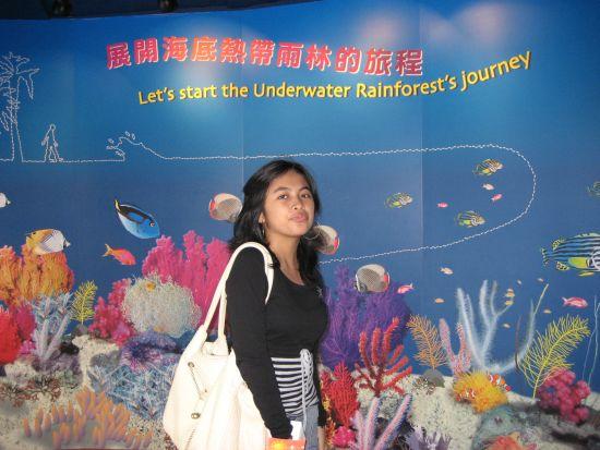 Ocean Park Underwater, Hong Kong